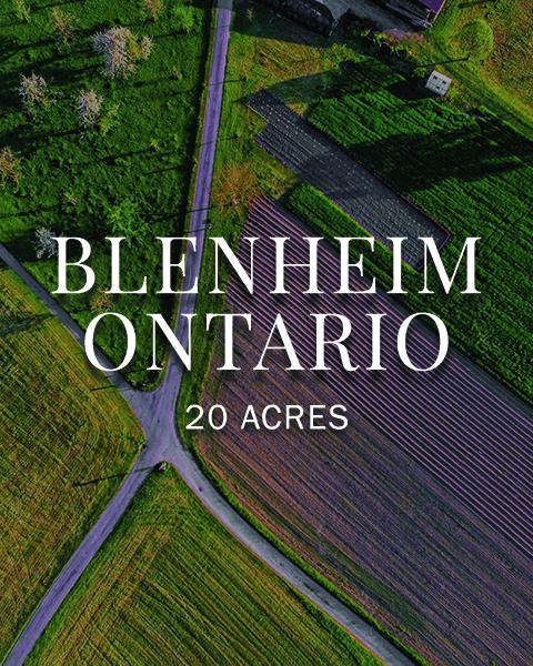 Blenheim Ontario