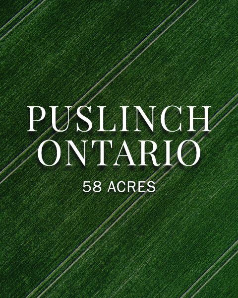 Puslinch Ontario