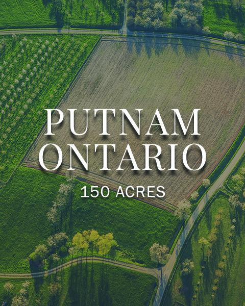 Putnam Ontario